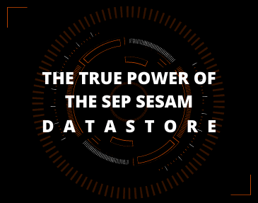 Webinar Cyber Security | Backup e Disaster Recovery: the true power of the SEP Sesam Datastore